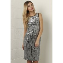 Fitted Sequin Dress in Silver