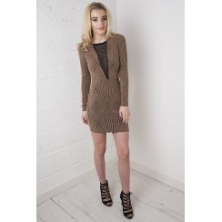 Gold Mini Dress with Mesh Detail