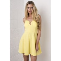 Lace Skater Dress in Yellow