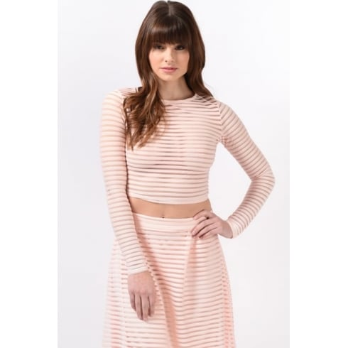 Mesh Stripe Crop Top in Nude