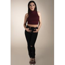 Roll Neck Crop Top in Maroon